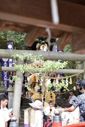 tenkawa10