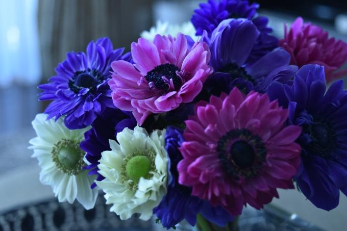 Flowertuft3